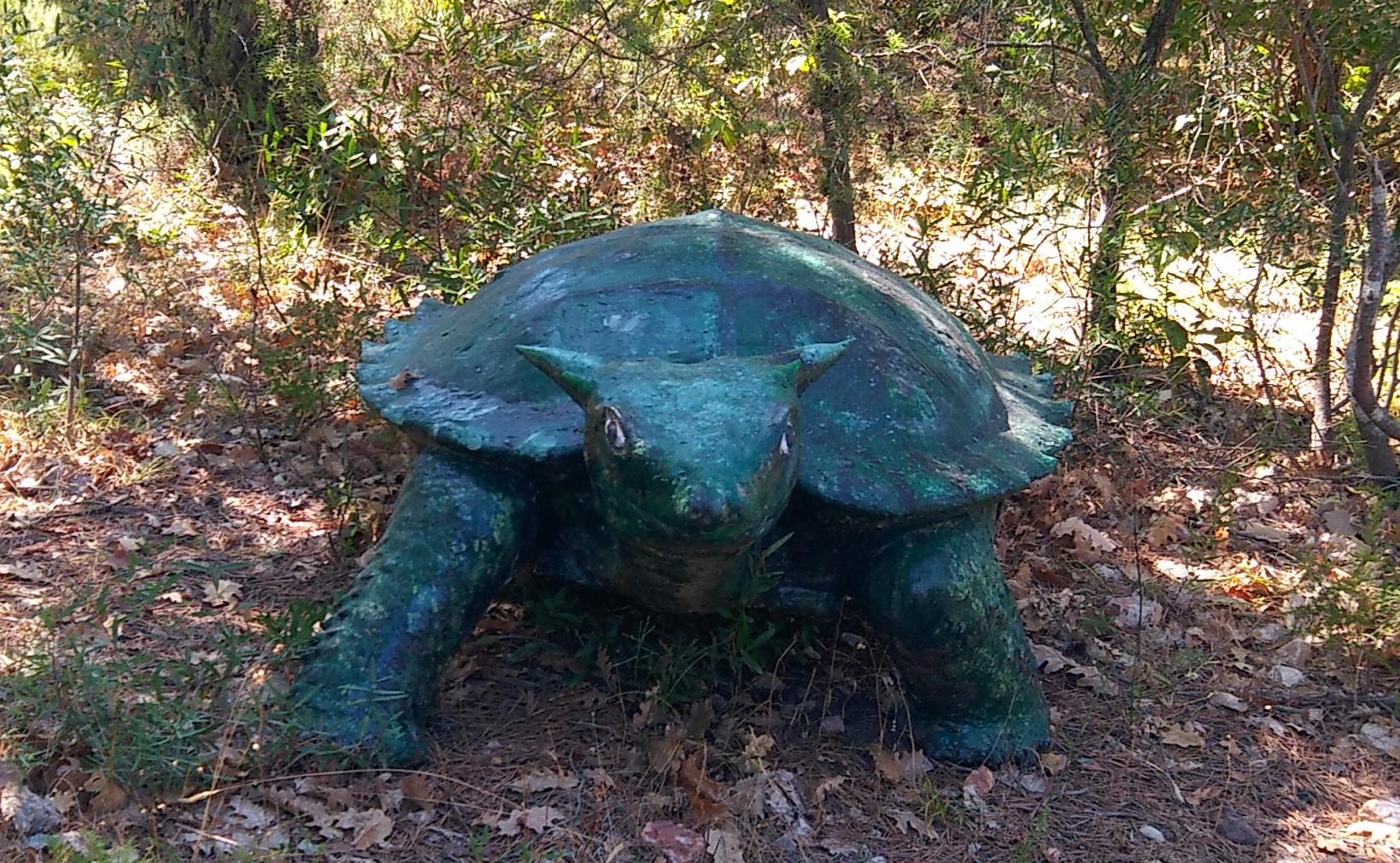 Un ancêtre de la tortue