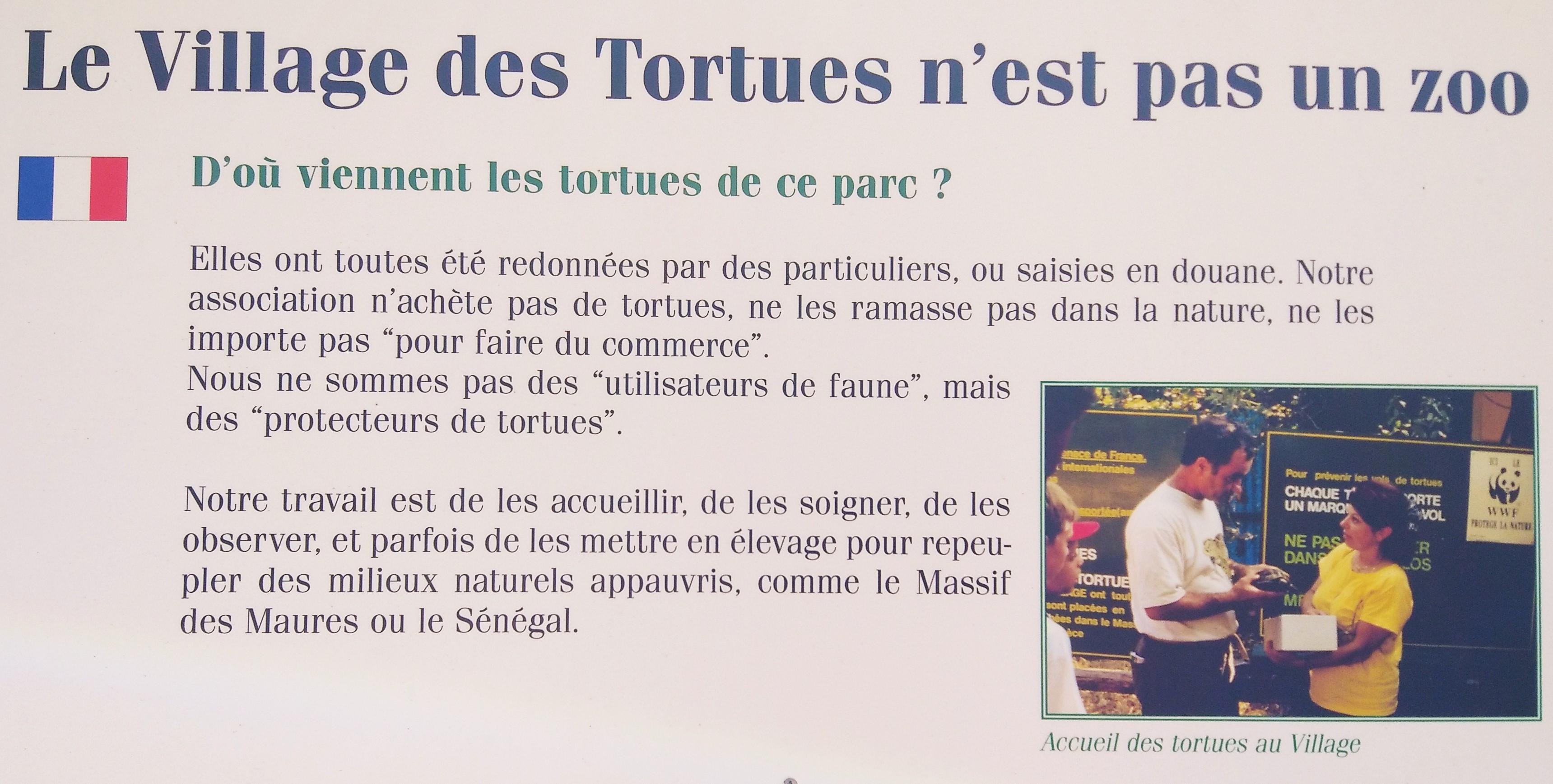 Le village des tortues n'est pas un zoo